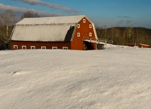 agricultural building snow on roof